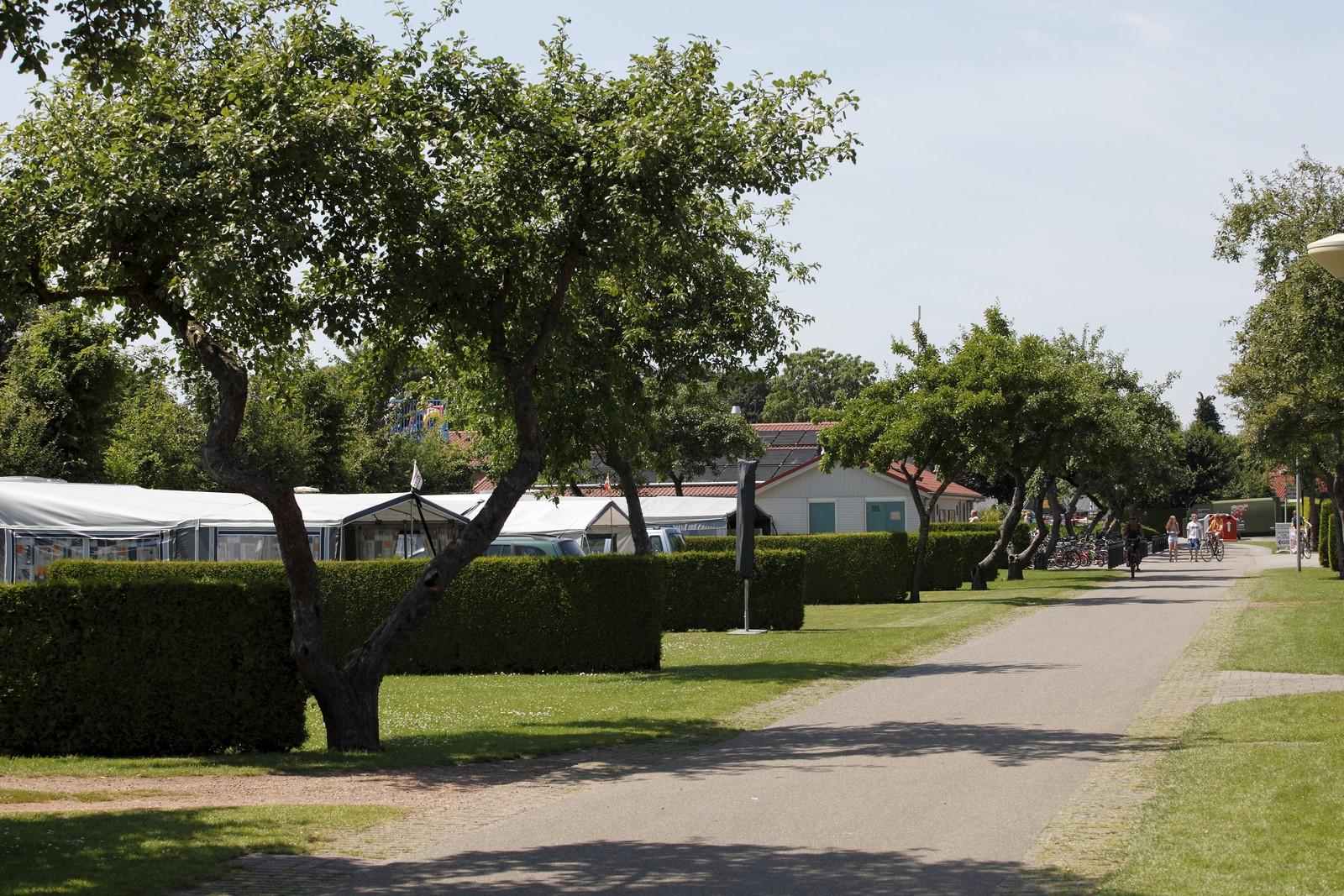vakantiepark_de_fruithof27